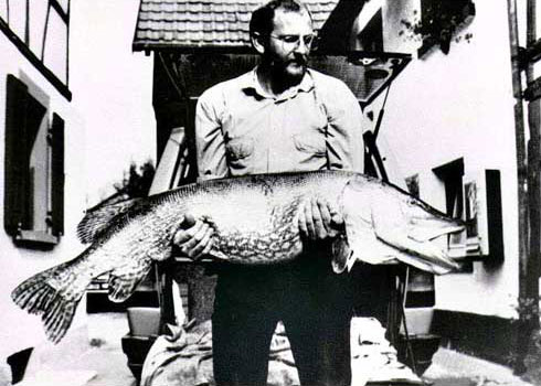 World record fish
