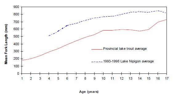 Lake trout size vs age for the province of Ontario (average) and Lake Nipigon.
