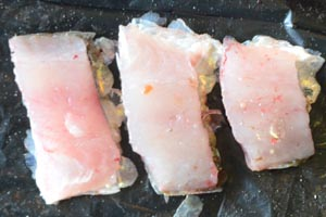 Cutbait Strips