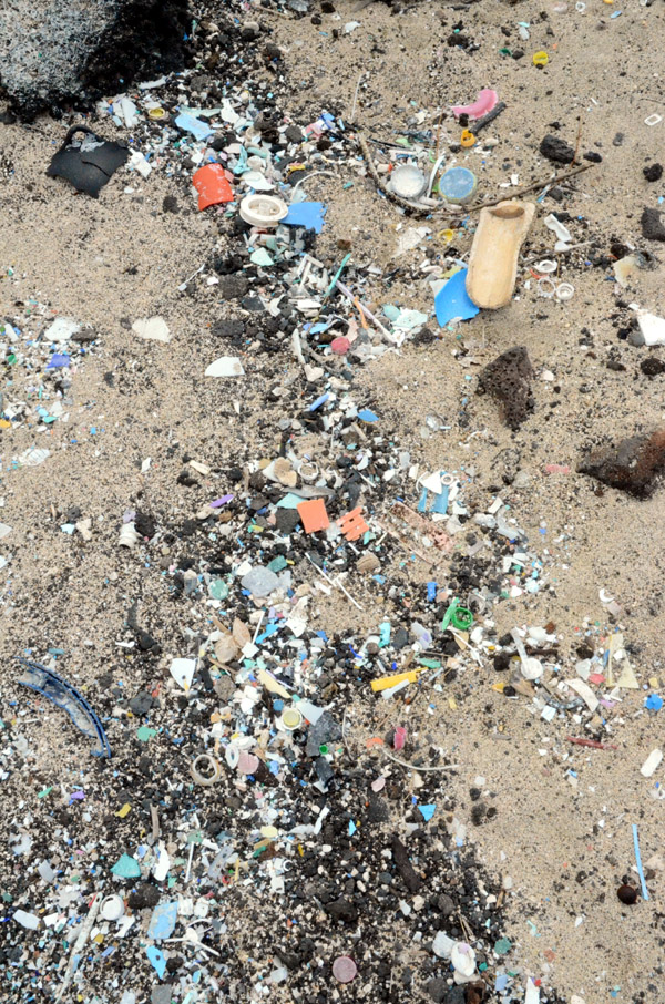 A massive amount of plastic fragments and microplastics (Kamilo Beach, Hawaii, Hawaii)